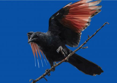 final-bird-02