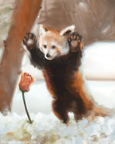 daily_paint___mister_red_panda__71_by_dan_zodiac-da56dt0